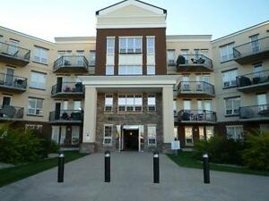 Mint Condition Turn Key Ready Fully Furnished Condo Living