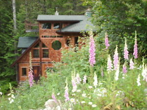 Beautiful room for rent - perfect for quiet nature lover! Dec  1