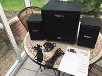 Roland Cube CM-110 2.1 Monitoring System