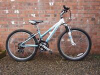 Childs/Youths 'Schwinn' Mountain Bike (reduced price)