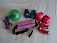 Various weights and weighted exercise equipment