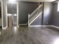 *UWO* - SINGLE ROOMS - SHORT TERM LEASE $500/M ALL IN