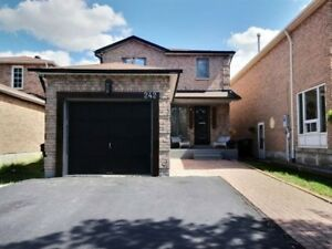 Beautiful Basement at high demand area in Brampton.