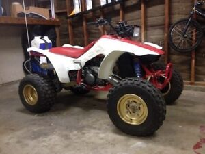 Looking for a Banshee or Trx250r