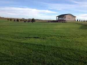 Outstanding Acreage Close to Regina, SK with lots of renovations Moose Jaw Regina Area image 3
