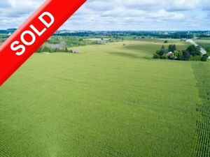 SOLD! Farmland Parcel for 2019 Crop in WOODSTOCK. 67 Acres!