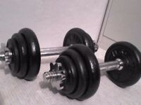 46 lbs 21 kg Metal Spinlock Dumbbell Weights - Heathrow