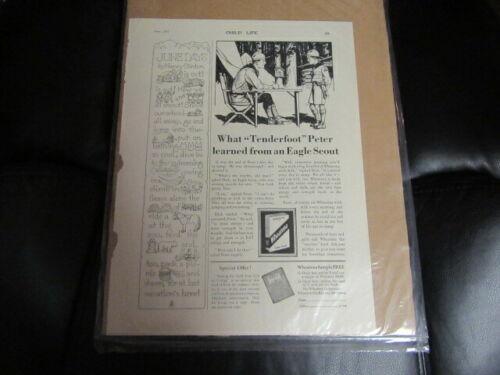 Wheatena June 1929 Child Life Magazine Boy Scout Ad     Cov