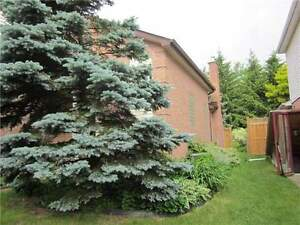 GOOD LACATION HOUSE FOR SALE Kitchener / Waterloo Kitchener Area image 10