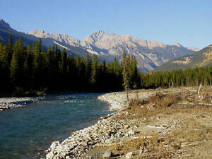 For sale by owner 5 Acres near Golden BC