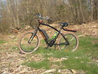 LOST ELECTRIC BICYCLE, REWARD $300.oo offered