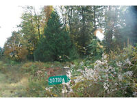 Listed below Land Tax Assessed Value!! 30790 Dewdney Trunk Rd