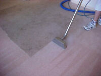 Action Steam Carpet Cleaning