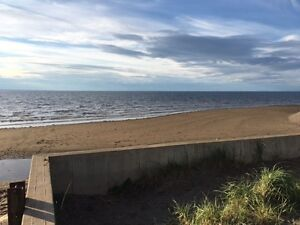 Bayshore Beach House Rental