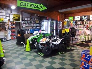 CAT SHACK PETERBOROUGH OPEN HOUSE OCTOBER 29 2016! Peterborough Peterborough Area image 8
