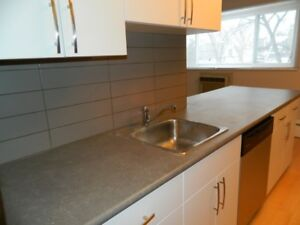 STAFFORD & TAYLOR, 1BR, DISHWASHER, STAINLESS STEEL APPLIANCES