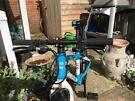 Frog 55 Team Sky kids bike