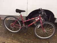 Cheap ladies Raleigh mountain bikes £25 each £45 for 2 .....