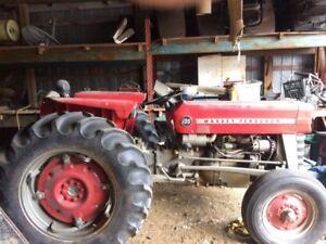 Recherche tracteur Massey 135 (ou autre)