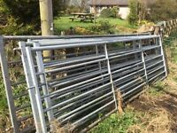 7 bar, Box Section, 12 ft Galvanised Field Gates. £65 each