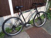Mountain bike with 26 inch wheels.