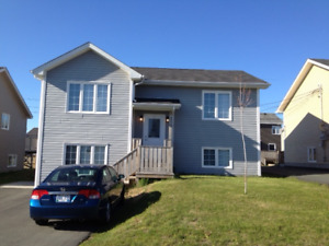 Beautiful Above Ground Two Bedroom Apartment for Rent St. John's