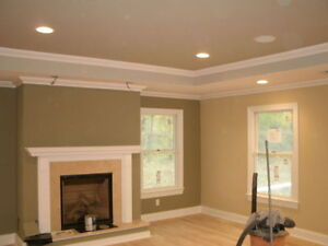 PRO PAINTER'S  LOOKING FOR WORK!! Jun special Kitchener / Waterloo Kitchener Area image 2