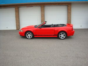 2001 Ford Mustang GT Convertible!!       LOW KM'S!!