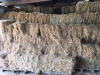 Small Bale June 2017 Hay for sale. Excellent Quality. Bulk Quantities available. Hartpury Area