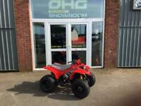 Quadzilla R100 Automatic Kids Quad Next Stock January