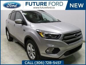 2017 Ford Escape SE LEATHER PACKAGE-POWER LIFTGATE AND MORE