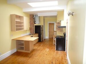 Awesome 4 bedroom in the heart of the Plateau Montreal