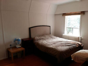Now/ Dec 1 - Nice furn room in safe character home in central ln