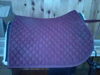 Horse tack- chaps, saddle pad, breastplate
