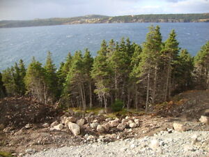 Ocean front property in Holyrood St. John's Newfoundland image 3