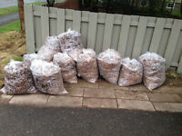 Bagged Leaves that can be used for compost