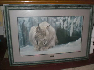 Robert Bateman - Framed Dozing Lynx Kawartha Lakes Peterborough Area image 1