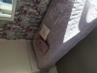 White Pine Single Bed- need gone ASAP