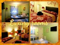DOUBLE, TWIN & TRIPLE LUXURY ROOMS IN GASGOW- DAILY - WEEKLY - MONTHLY LET - FREE WI FI - SHORT TERM