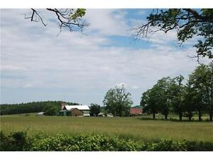 Farm House with Barn and Pasture for Rent