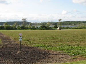 LAKEFRONT LOTS - PRICED FOR QUICK SALE!