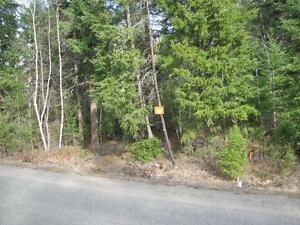 1 acre Lot in Private Residential Area