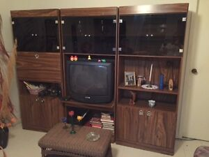 Retro 70's Wall Unit