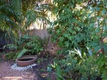 Renovated 2br unit with garden and BBQ area - Coconut grove Coconut Grove Darwin City Preview