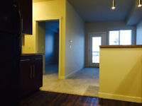 ESTEVAN - Brand New 1 bedroom Condos