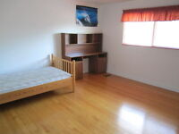 Room For Rent near CARLETON U and BUS Stop