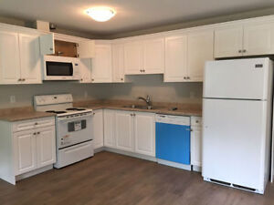 Newly Renovated 1 Bedroom Suite in Crescents Area