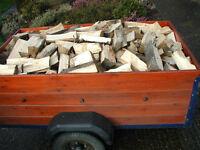 5ft x 3ft trailer load of Seasoned Logs, split logs for Wood burner , open fires