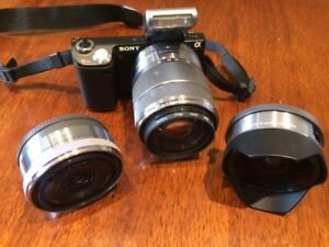 Sony Nex 5N with portrait lens and fish eye lens- negotiable