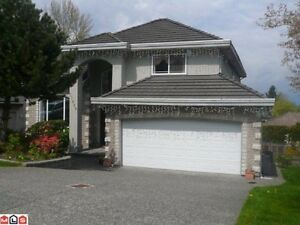 Surrey Beautiful House for Rent